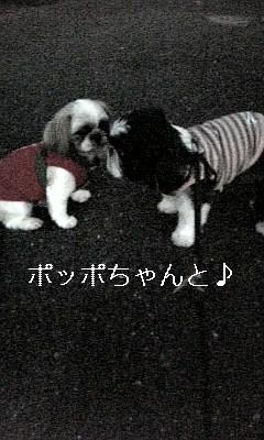 ハードだけれど(^.^)